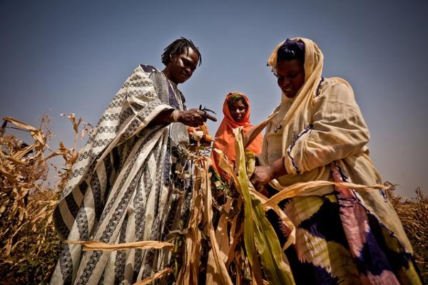 Baaba-Maal-Mauritania