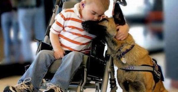 disabile-e-pet-therapy-e1352408637630