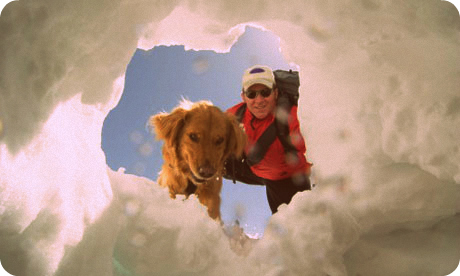 An-avalanche-dog-rescuing-001