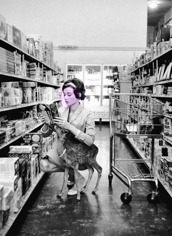 Audrey-Hepburn-and-her-pet-deer