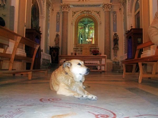 Italo di Scicli in Chiesa