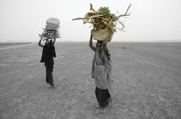 La-crisi-del-Mali-in-un-impasse_-le-grandi-potenze-stanno-a-guardare-650x430