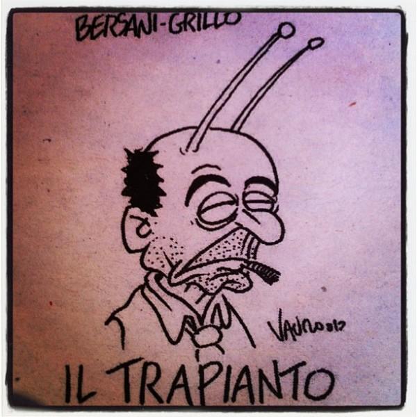 bersani-grillo-trapianto