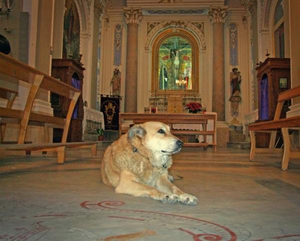 Santa Maria degli Angeli, a San Donaci