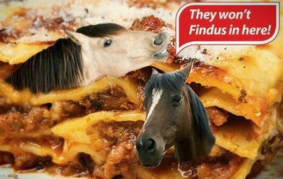 findus scandalo carne