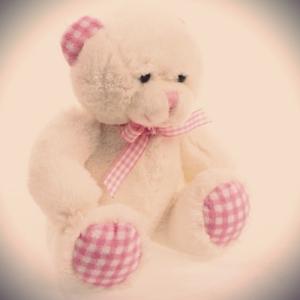 Pink-teddy
