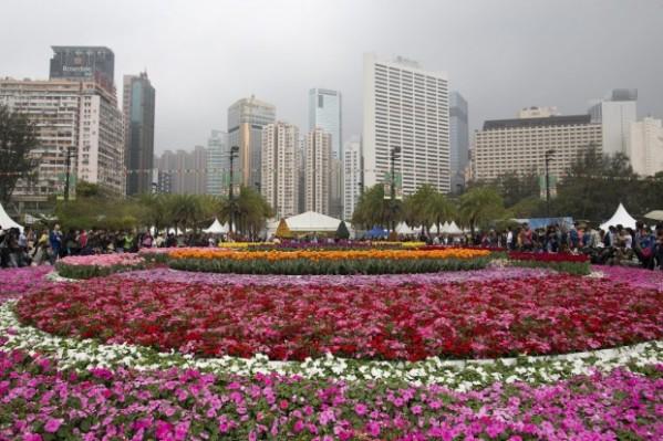flower -show-hong kong -tuttacronaca