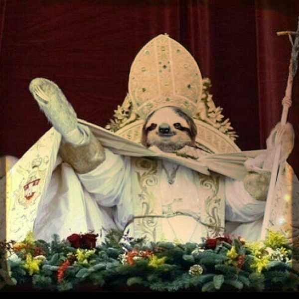 Papa- tuttacronaca-pope