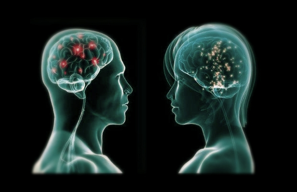 cervello-donna-uomo-intelligenza-tuttacronaca
