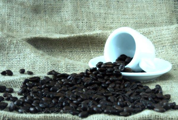 guerra-caffè-nespresso-vergnano-capsule-tuttacronaca
