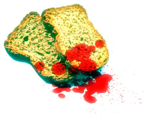 panificio-morto-uccisione-omicidio-tuttacronaca