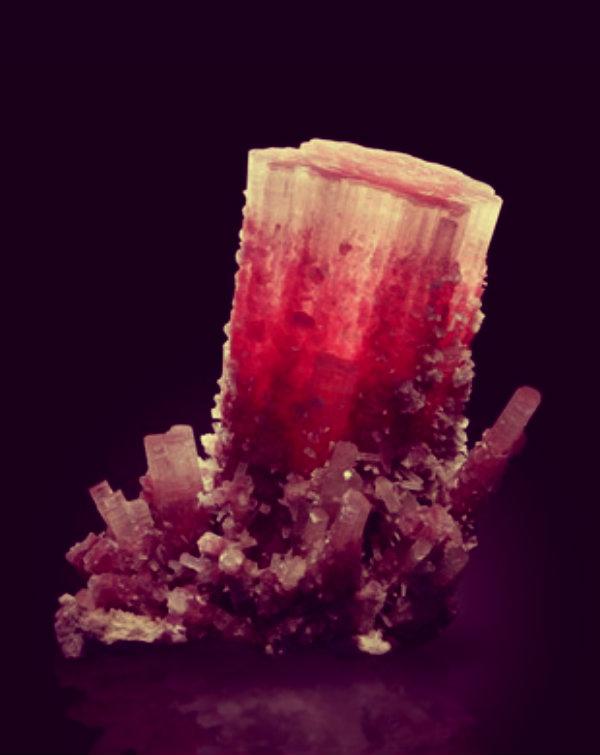 tormalina rosa - tuttacronaca
