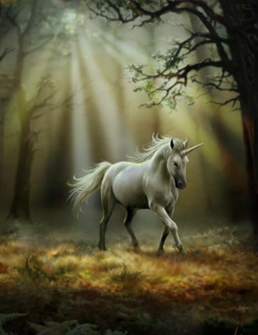 Siti Web di incontri di unicorno