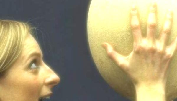 uova, preistorico-christie's-tuttacronaca