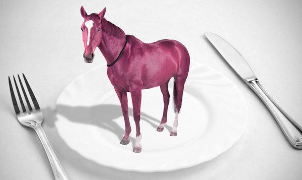carne di cavallo-scandalo-olanda-sequestro-tuttacronaca