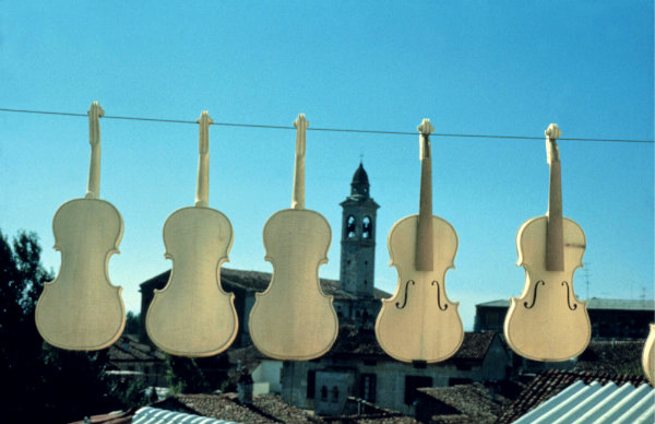 Cremona-tuttacronaca