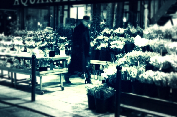 flower-shop-St-Germain,Paris,tuttacronaca