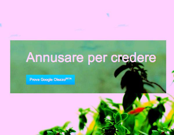 Google-Olezzo - tuttacronaca