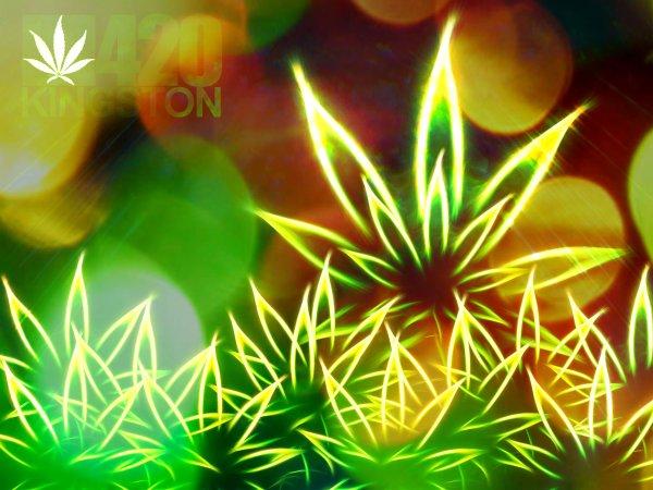 marijuana-tuttacronaca