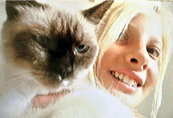 scazzi-gatto-tuttacronaca