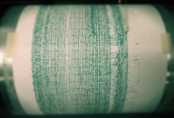 sisma-terremoto-india-darreng-tuttacronaca