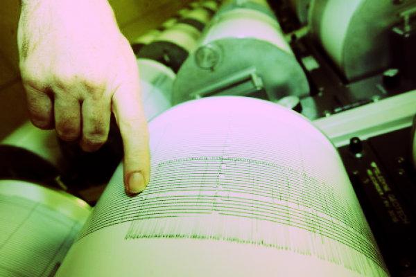 sismografo-terremoto-calabria