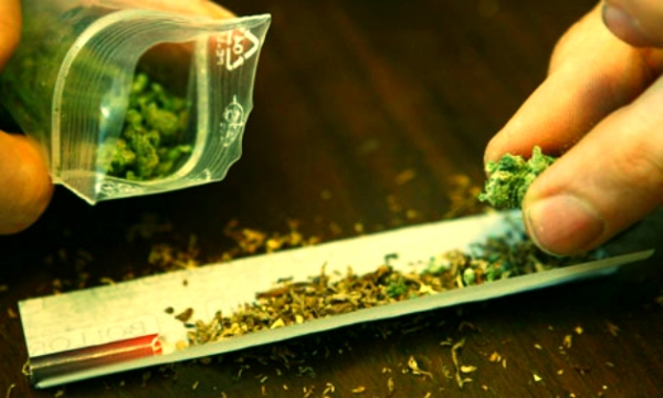 cannabis-tuttacronaca