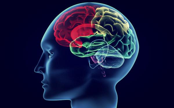 cervello-valium