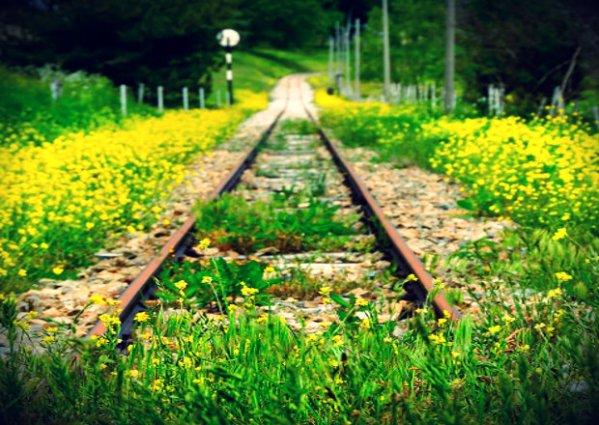 ferrovie_tuttacronaca