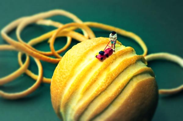 foodies-orange_tuttacronaca