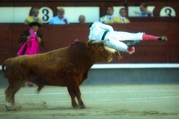 torero- arena-spagna-incornato-tuttacronaca