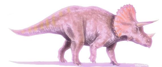 dinosauro-tuttacronaca