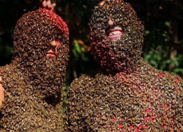 barba-api-contest-canada-tuttacronaca