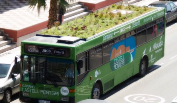 bus-giardini-tuttacronaca