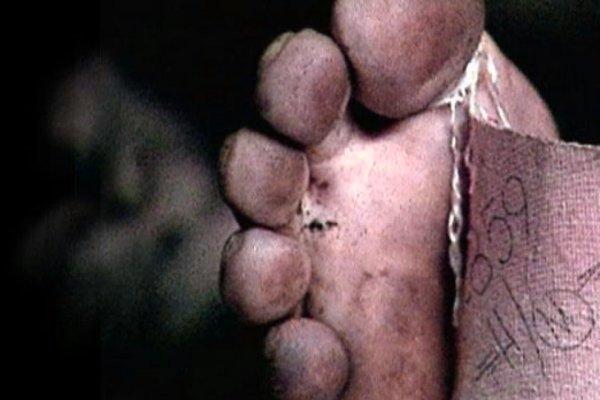 cadavere-bosco-tuttacronaca