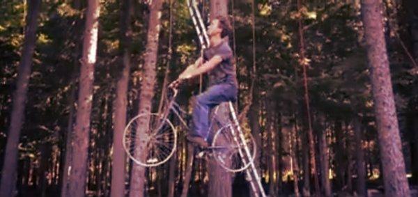 casa-albero-bicicletta-tuttacronaca