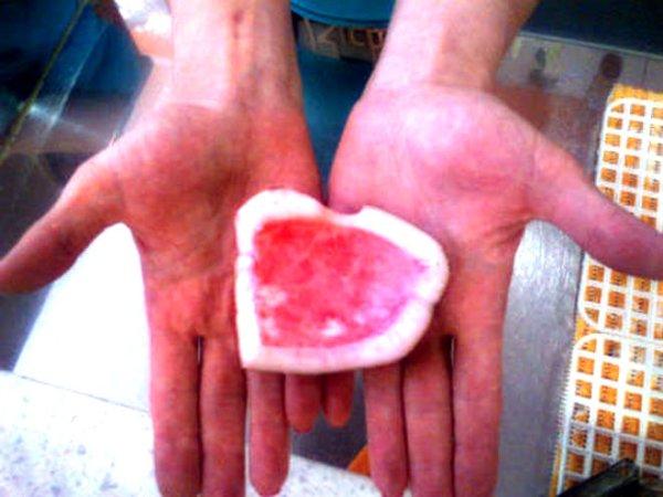 cocco-rosso-tuttacronaca