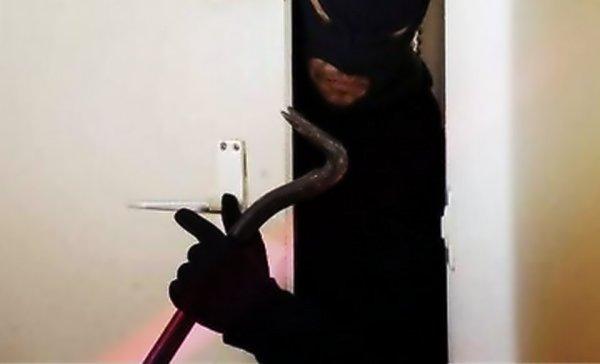 furto-in-villa-brianza-giustizia-tuttacronaca