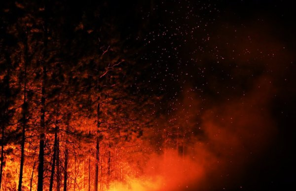 incendio-yosemite_tuttacronaca