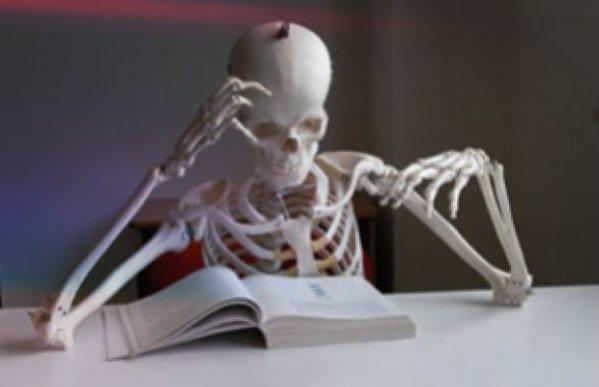 libri-di-testo-scuola-spese-tuttacronaca