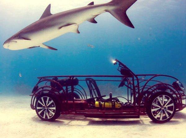 maggiolino-cabrio-subacqueo-tuttacronaca