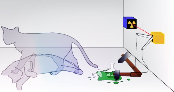 Schrodingers_cat-paradosso-tuttacronaca