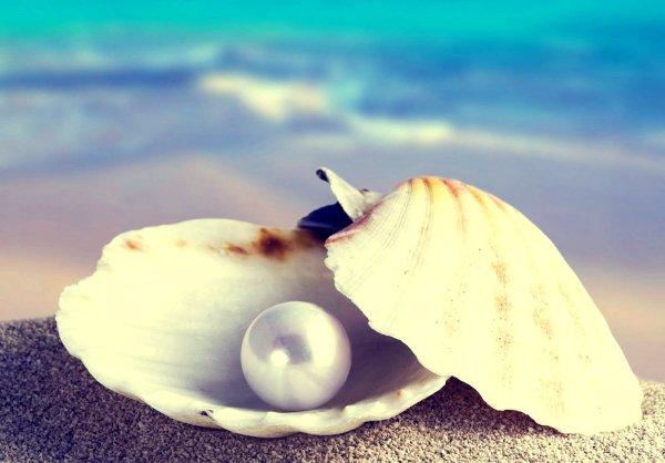 verità-perla-tuttacronaca