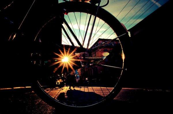 Biciclette-Bologna-bambina-multata-tuttacronaca