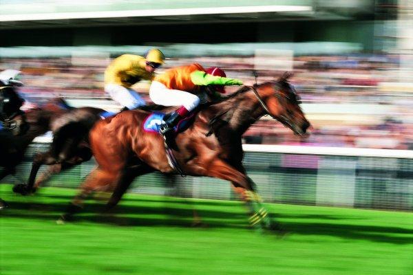 cavalli-corse-lanciano-fantasmi-tuttacronaca