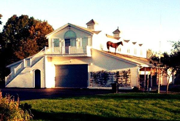 cavallo-sul tetto-tuttacronaca