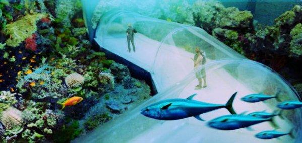 oceanarium-acquario-tuttacronaca