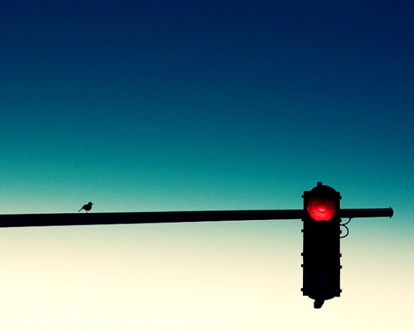semaforo-rosso-viagra-tuttacronaca