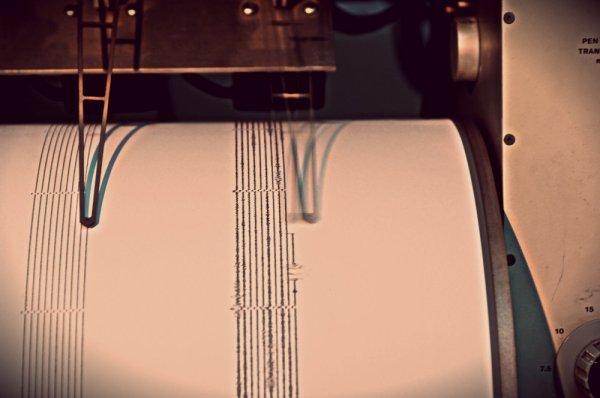 sismografo-terremoto-giappone-fukushima-tuttacronaca