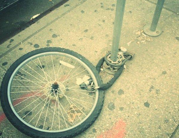 victoria-beckham-bicicletta-tuttacronaca